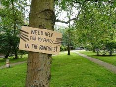 """""""Need help for my family back in the rainforest"""" -Trees Mother Earth, Mother Nature, Rainforest Trees, Rainforest Animals, Graffiti, Protest Art, Protest Signs, Tears Of Joy, Le Web"""