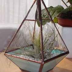 Stained Glass Air Plant Terrarium, Air Plant Holder - MADE TO ORDER £45.00