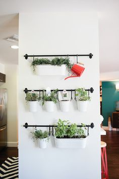 Create a hanging garden with metal tins, hooks, and towel bars!