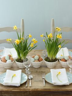 A simple tabletop with miniature daffodils in latte bowls.