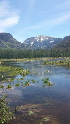 East Inlet Trail-Grand Lake, Rocky Mountain National Park #Colorado #nationalparks