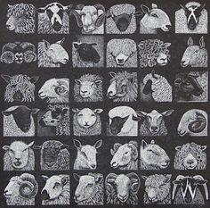 Hilary Paynter : Sheep Show at Davidson Galleries