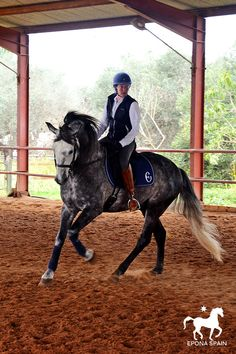 Sue Conway on her horse Olivo, andalusian horse