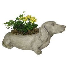 Dachshund Statue For the Yard Pinterest Gardens Chevy and