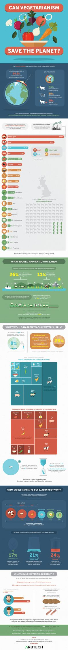Can Vegetarianism Save the Planet Infographic