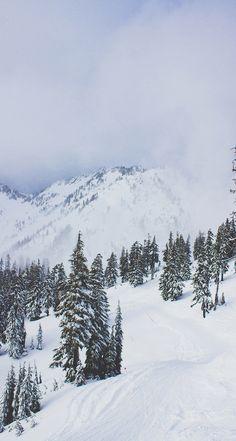 Tripping Down Ski Hills