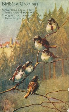 BIRTHDAY GREETINGS six sparrows Vintage postcard