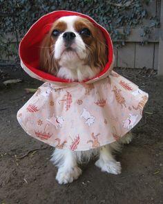 Dog Raincoat Jacket Hood