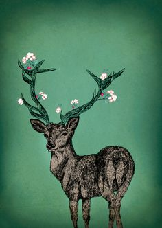 Das frühlingshafte Hirsch-Poster mit den liebevoll illustrierten Kirschblüten ist ein besonderer Hingucker für alle Freunde von Wald und Wiese.     ...