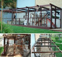 I love this Catio because the doggie door looks to be coming from the window! And is has a door for you, too!