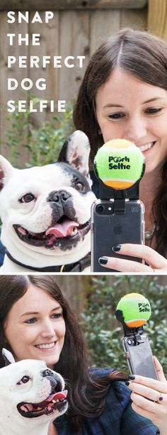 Snap a perfect dog selfie every time. This gadget, discovered by The Grommet, mounts a tennis ball on your phone, drawing your pup's attention like a magnet.