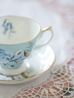 Beautiful teacup and saucer ....Tumblr pic