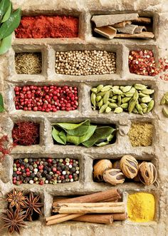 Things Organized Neatly - herbs and spices