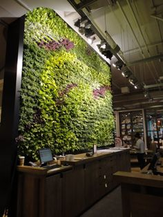 "The ""living wall"" behind the cashier desk at the West Elm concept store in Seattle. Very green!"