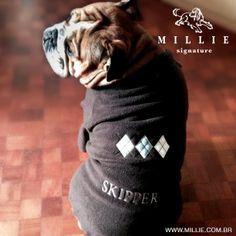 Skipper no SOFT ARGYLE MILLIE - Já me preparei para o frio com minha nova roupa personalizada com meu nome! Garanta a de seu Pet também: www.millie.com.br