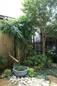 Courtyard Landscaping, Backyard Garden Landscape, Small Backyard Gardens, Small Space Gardening, Garden Landscape Design, Small Gardens, Japan Landscape, Courtyard Gardens, Large Backyard