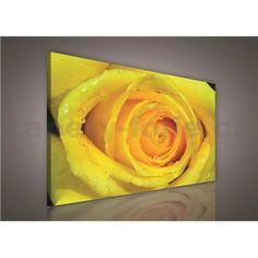 Obraz na stenu žltá ruža 75 x 100 cm Angles, Pineapple, Fruit, Pine Apple