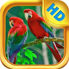 TT 1/22  The Bird Book - An Interactive Storybook for Children.  This book app takes your child on an educational journey to learn about various birds and their associated bird calls.