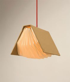 A Book Light. How neat is that!