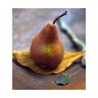 glykyvrastos:  Συμβουλές, για να φτιάξετε γλυκά κουταλιούΤο να φ... Pear, Fruit, Food, Essen, Meals, Yemek, Eten, Bulb