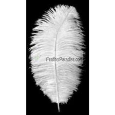 White Ostrich Feathers Wholesale BULK CHEAP DISCOUNT 12-14 inch 100 Pieces Wedding Centerpieces Crafts