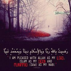 I am pleased with Allah as my Lord. Islam as my Deen and Muhammad (saw) as my Nabi. Tirmidhi.