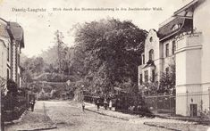 Fk Danzig / Gdansk / in Pommern - Jahr 1910 - Langfuhr - Hermannshöherweg ! Danzig, Germany And Prussia, Krakow, Poland, Places, Outdoor, Painting, Photographs, Reading