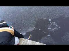 Este Hombre Disparó Fuegos Artificiales En Un Lago Congelado Y Fue Testigo De Algo Increíble - Nunca he sido fan de la pesca en hielo. Claro, puedes sentarte todo el día bebiendo cervezas con tus amigos y familiares. Al final, sólo estás sentado durante horas, viendo un agujero en el hielo mientras se congela lentamente hasta la muerte. Es por eso que Nils Bremer, de Suecia, decidió ver si... #Video=Noleasmás,solove...  http://www.vivavive.com/este-hombre-disparo-fu