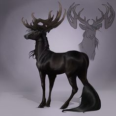 Corvus | Stag | Renegade by mule-deer on deviantART