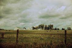 photo: Tom Hart Photax on the Ashland Farm Tour