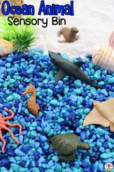 Are you looking for a fun way for your kids to learn about ocean animals? This Ocean Animal Sensory Bin is a hands-on sensory play activity that will introduce your children to the ocean habitat and the animals that live there. Your kids can pick one of the free printable animal cards and find that animal in the sensory bin for even more sensory play fun! Click on the picture to learn more about this sensory play activity! #sensoryplay #sensoryactivity #sensorybin #sensoryplayidea #oceanactivty