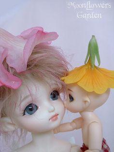 Kiss !  Root - Bambicrony CB Elf Roko & Pip - Fairyland Puki Piki