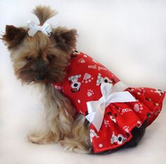 I Woof You Valentine Dress for the Valentine's Day Yorkie.
