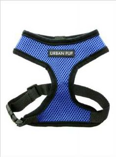 Shop for Royal Blue Soft Harness French Bulldog Harness, Mini Dogs, Pet Fashion, Dog Carrier, Dog Coats, Spring Trends, Dog Accessories, Animal Design