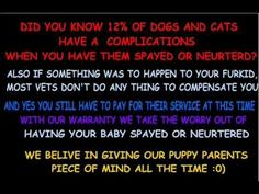 Vet care and the cost, what dose your breeder provide for you and your puppy?