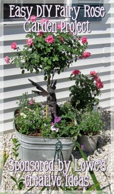 Fairy Garden Container Ideas | again, thanks for joining me in my Lowe's Creative Ideas Garden ...