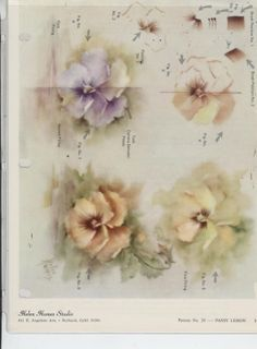 Pansy Lesson by Helen Humes China Painting Study | eBay