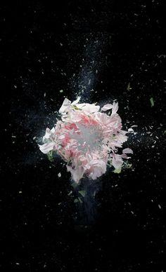 Zedd's new single the middle cover art