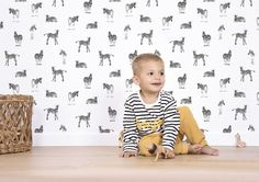 Zebra Wallpaper - Silk Interiors Wallpaper Australia  Available from www.silkinteirors.com.au #wallpaper #wallpaperforwalls #kidswallpaper #nursery #zebras
