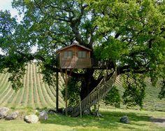 Agriturismo La Piantata - Lazio -Casa sull'albero