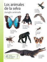 Jungle Animals (Animales de la selva) themed vocabulary -- Introduce Spanish words for jungle animals with this handout. Get the printables from TeacherVision: https://www.teachervision.com/spanish-language/printable/70419.html