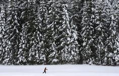 Un hombre esquía cerca de los últimos árboles cubiertos de nieve cerca de la pequeña aldea Kaltenbrunn cerca de Garmisch-Partenkirchen, el sur de Alemania, durante el invierno, con temperaturas alrededor del punto de congelación. Los meteorólogos pronostican temperaturas alrededor del punto de congelación y posterior caída de nieve en la región. (Christof Stache / AFP)