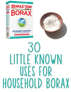 30 Little Known Uses For Household Borax