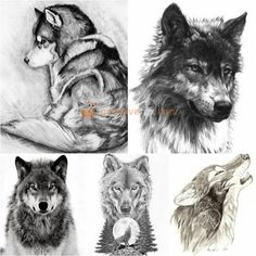 Wolf Tattoo Sketch | Wolf Tattoo Ideas • Wolf Tattoo Meaning • Wolf Tattoo for Men • Wolf Tattoo for Women | Explore more Wolf Tattoo Ideas on https://positivefox.com #wolftattoo #wolftattooformen #wolftattooforwomen #wolftattoomeaning