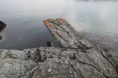 Nature's diving board.