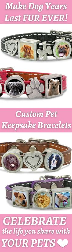 The Molly Bracelet, https://zeldassong.myshopify.com/collections/dog-jewelry-photo-bracelet-collection/products/molly-photo-dog-charm-leather-bracelet?variant=18567804935&utm_source=pinterest, is designed to tell the story of life with your pet – or pets – with your special photos and charms that slide on to the thin leather wristband (it's really a small collar!) in 4 colors. Arrange them as you like – and add more of your fur babies!