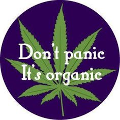 Smoking Ganja : The Yogic Way ! by Psychedelic Adventure
