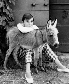 Audrey and a donkey by Norman Parkinson