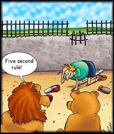 Lion humor