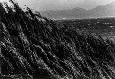 """rawpleasures: """" Miyako Ishiuchi - Yokosuka Story #4, 1976-1977 """""""
